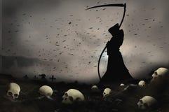 Skull field mort2 Stock Photos