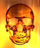 Skull in on the fire background Stock Images