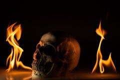Skull in fire Stock Photos