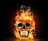 Skull with fire. Royalty Free Stock Image