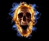Skull Fire Wallpaper 3D Illustration royalty free illustration