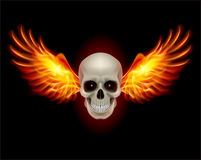 Skull with Fire Wings. Danger Skull with Fire Wings. Illustration on black Stock Photo