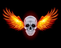 Skull with fire wings. Skull with fire wings on black background Royalty Free Stock Photography