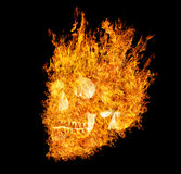 Skull in flame on black background Royalty Free Stock Photography