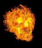 Skull in flame on black background Stock Photography