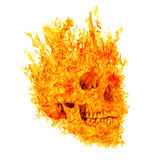 Skull in flame on white background Stock Photography