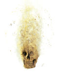 Skull flames Fire effect Royalty Free Stock Images