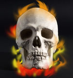 Skull with flames Stock Image