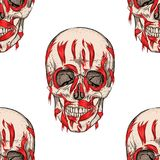 Skull and flesh. Royalty Free Stock Images