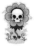Skull flower Stock Photo