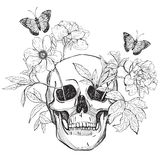 Skull, flowers and butterfly. Stock Images