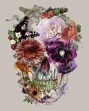 The skull of flowers royalty free stock photos