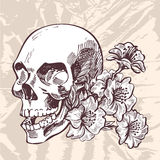 Skull and flowers hand drawing sketch on grunge paper background Royalty Free Stock Photography