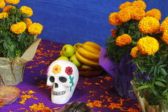 Skull with flowers I Royalty Free Stock Image