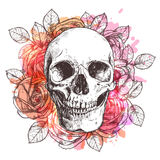Skull And Flowers Stock Photography