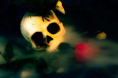 Skull in fog stock photo