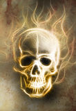 Skull and fractal effect. Color background Stock Image