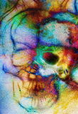 Skull and fractal effect. Color space background, computer collage. Elements of this image furnished by NASA. Royalty Free Stock Photos