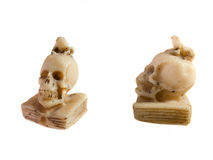 Skull with a frog. On his head Royalty Free Stock Photography