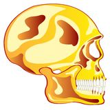Skull from gild in profile Royalty Free Stock Photos