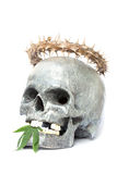 Skull and Green Cannabis Leaf Royalty Free Stock Photos