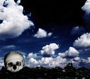 Skull on the ground Stock Photography