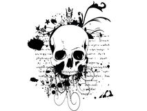 Skull on a grunge background. Illustration Stock Image