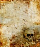 Skull on a grunge background royalty free illustration
