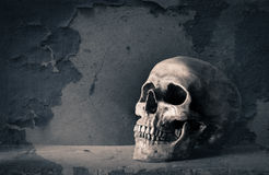 Skull and grunge Stock Photos
