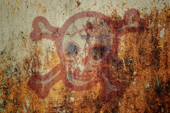 Skull on grunge wall Stock Images