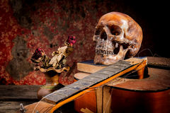 Skull and guitar,book on old wood, Stock Photos