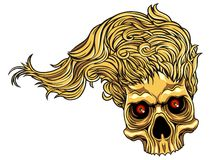 Skull with hair Stock Image