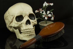 Skull and Hairbrush. Skull with hairbrush and zen jade flower arrangement Royalty Free Stock Photos