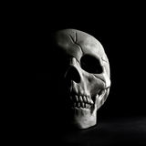 Skull. With half of it`s face in hidden behind a shadow on a black background Royalty Free Stock Photos