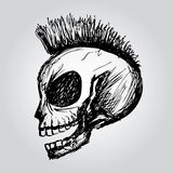 Skull. Hand drawing Stock Images