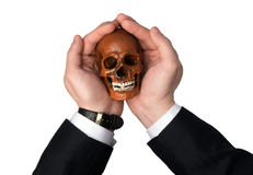 Skull in the hands Stock Image