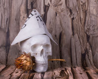 Skull with hat of the newspaper and thistles in his teeth Stock Images