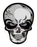 Skull head Royalty Free Stock Photography