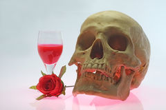 Skull head and rose. Royalty Free Stock Photos