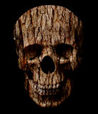 Skull head. Royalty Free Stock Image