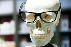 Skull head wearing eyeglasses and white scientific lab coat. royalty free stock photo