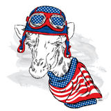 Skull helmet. Vector giraffe. Royalty Free Stock Photography
