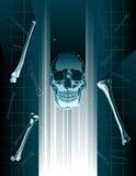 Skull hologram Stock Images