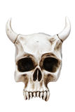 Skull With Horns. Isolated over white - With clipping path Stock Photo