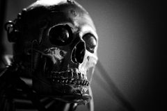 Skull of a human size robot Royalty Free Stock Photography