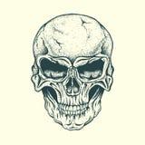 Skull of human. Vector illustration.Hand drawn style Stock Photos