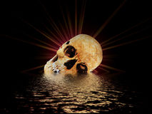 The Skull II. Skull out of the water vector illustration