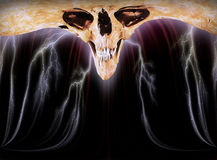 The Skull III. A skull with lightnings frome above Royalty Free Stock Photo