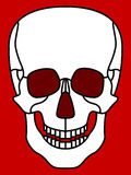 Skull. Illustration of the cartoon skull icon Stock Images