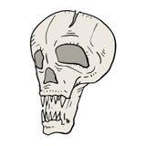 Skull illustration Royalty Free Stock Photo